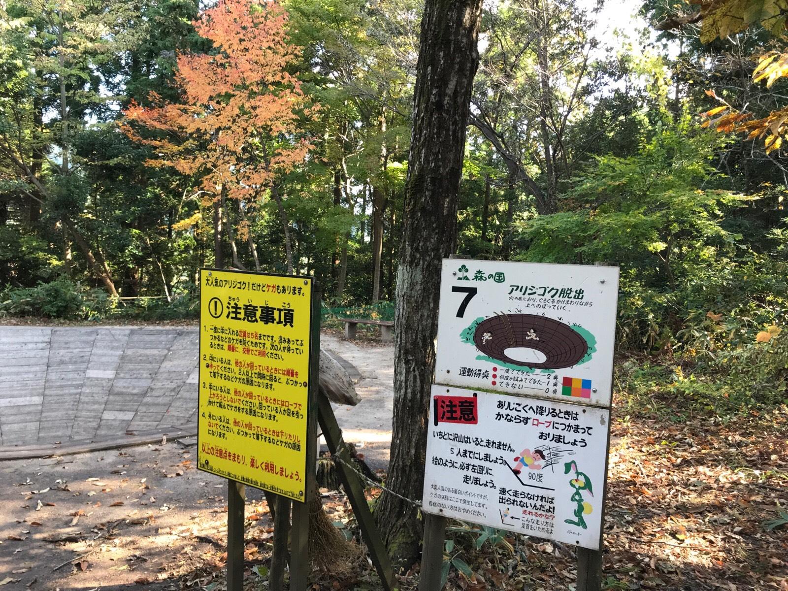 アリジゴク脱出という名のアスレチック:森の国大山フィールドアスレチック